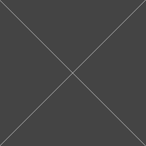 Clear polypropylene labels 45mm x 20mm